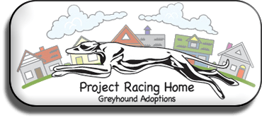 Project Racing Home
